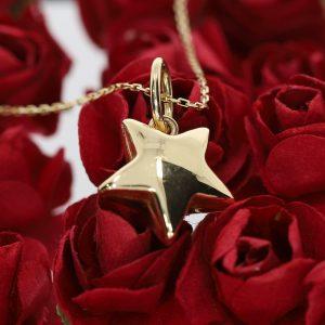 Yıldız Altın Kolye 14 Ayar
