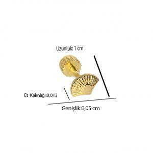 Deniz Kabuğu Altın Tragus 14 Ayar